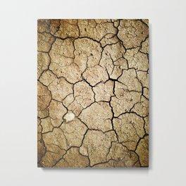Dirt Metal Print