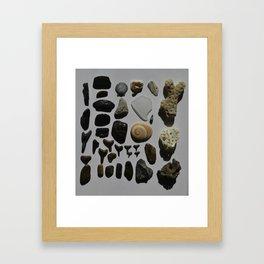 Beach Day Fossils Framed Art Print