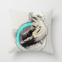 Could be. Throw Pillow