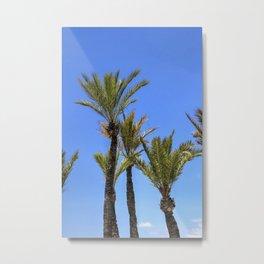 Paradise Palm Tress Metal Print