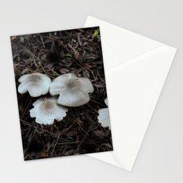 Beautiful Mushrooms Stationery Cards