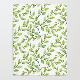 Branches and Leaves Poster
