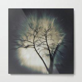 tree in dreamland Metal Print