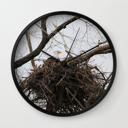 Bald Eagle on a Nest Wall Clock
