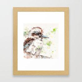 A Kookaburras Gaze Framed Art Print