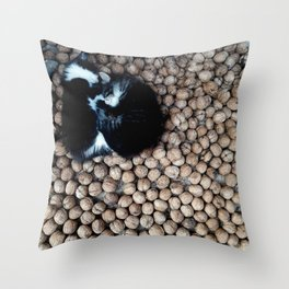 Two little kitties on some nuts Throw Pillow