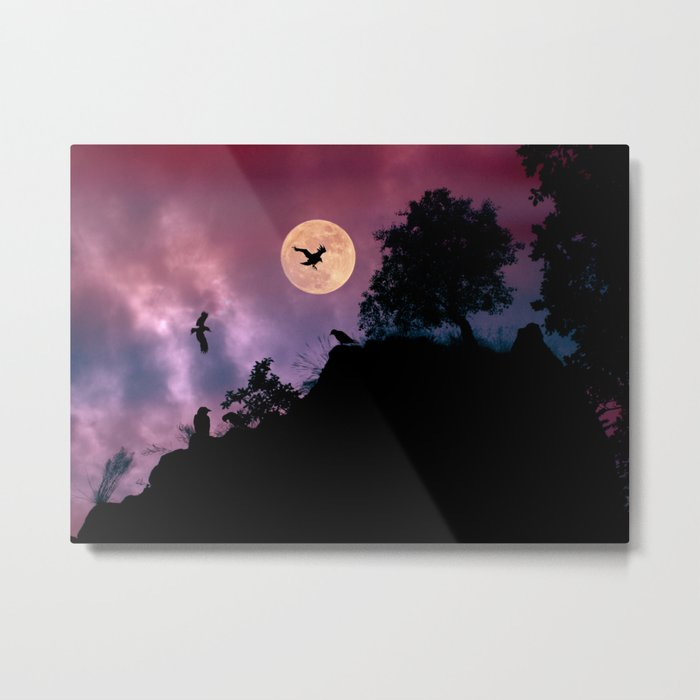 Crow meeting Metal Print