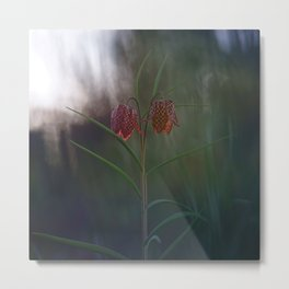 Silent, Happy Morning. Metal Print