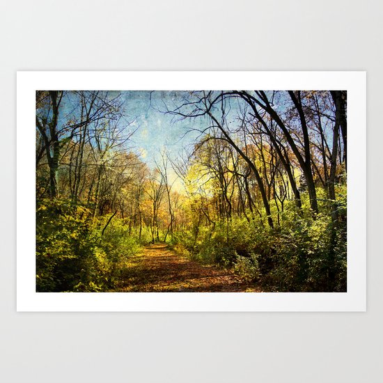laumeier Fall Art Print