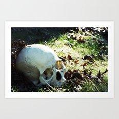 More Skulls Please Art Print