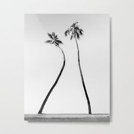 Palm Light Metal Print