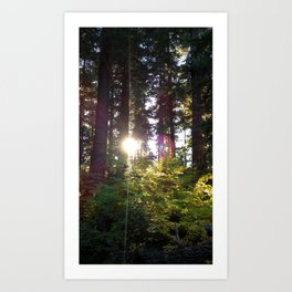 (#137) Sun Sparkles Art Print