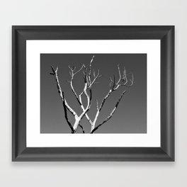 Tree Skeleton  Framed Art Print