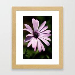 Simple Purple Framed Art Print