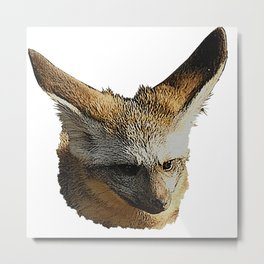 Bat-eared fox, cute animal Metal Print
