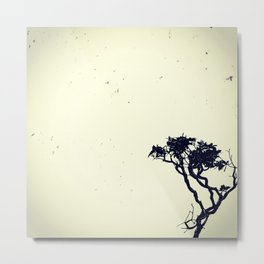 Swarm of baths and a lonely tree Metal Print