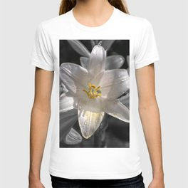 Colourful lily on monochromatic background T-shirt