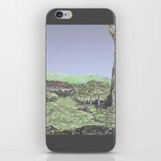 HOLSTEINS iPhone & iPod Skin