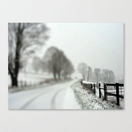 cold fence Canvas Print
