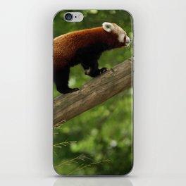 Happy Red Panda. iPhone Skin