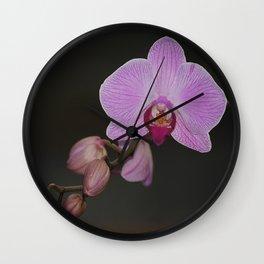 Orchidee Wall Clock