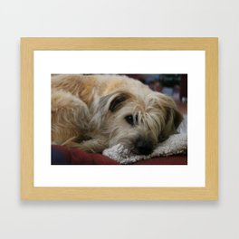 Melancholy  Framed Art Print