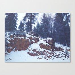 Snowy Rocks Canvas Print