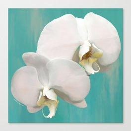 WHITE ORCHIDS - AQUA Canvas Print