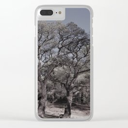 cork oak trees Clear iPhone Case