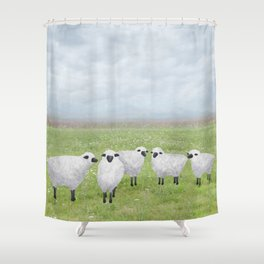 sheep and queen anne's lace Shower Curtain
