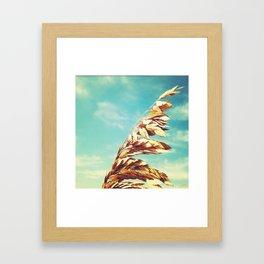 Burnished. Framed Art Print