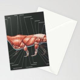 Shringasaurus Indicus Muscle Study Stationery Cards