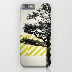 Ulmus parvifolia (Defying the Odds) Slim Case iPhone 6s