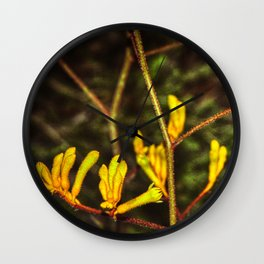 Yellow Kangaroo Paw flower against a blurred background Wall Clock