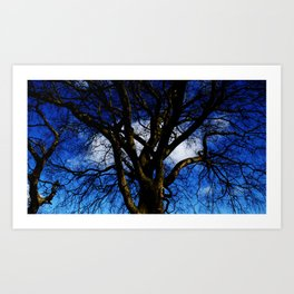Mr Blue Sky. Art Print