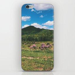 Countryside • Appalachian Trail iPhone Skin