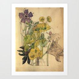 Spurge With Yham - Charles Rennie Mackintosh - 1909 Art Print