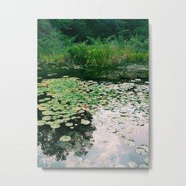 A Little Pond Metal Print