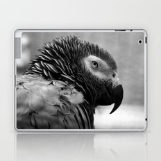 Grey Parrot Laptop & iPad Skin