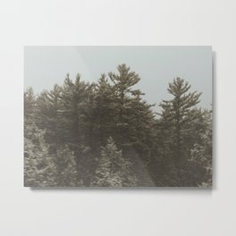 Snow fazed trees  Metal Print