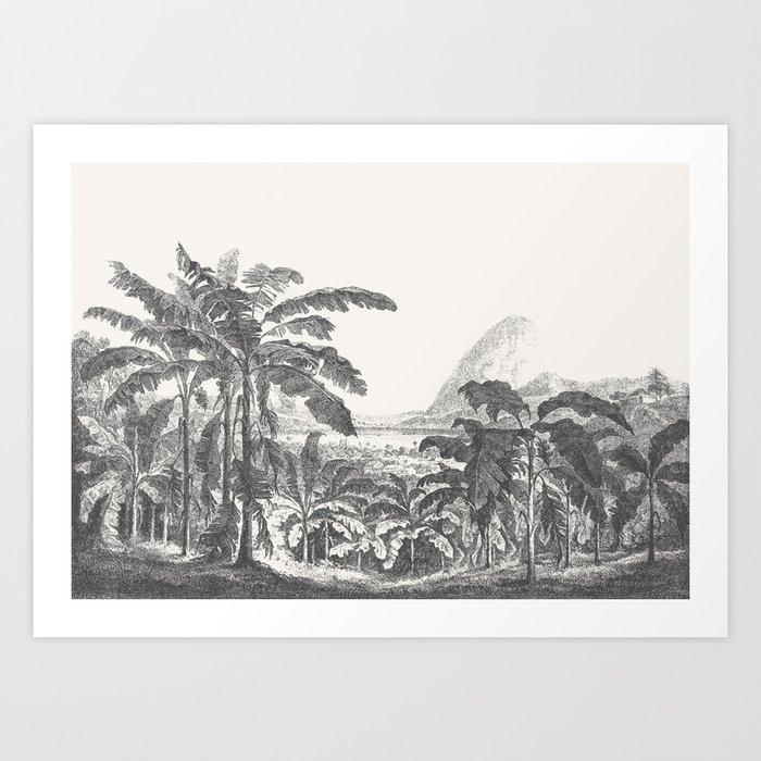 Palms and Mountain Kunstdrucke