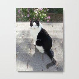 The Cat Metal Print