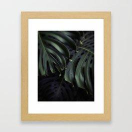 Moody Monstera Framed Art Print