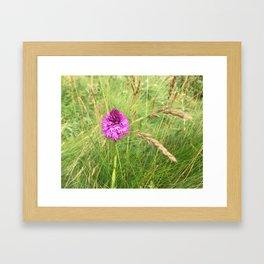 petite fleur Framed Art Print