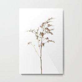 Soft Botanical in the Snow - Print No.1 Metal Print