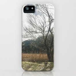 The big leafless tree iPhone Case
