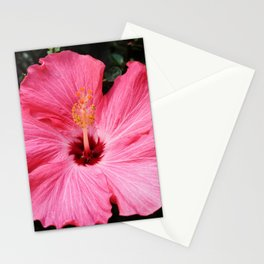 Five Pink Petals Stationery Cards