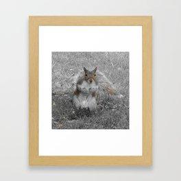 Me So Happy Framed Art Print