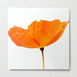 One And Only - Orange Poppy White Background #decor #society6#buyart Metal Print
