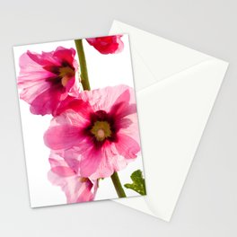 Alcea Rosea 4177 Stationery Cards